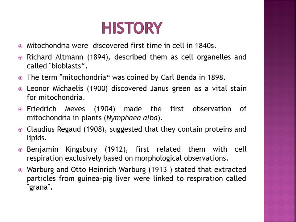 history Mitochondria were discovered first time in cell in 1840s.