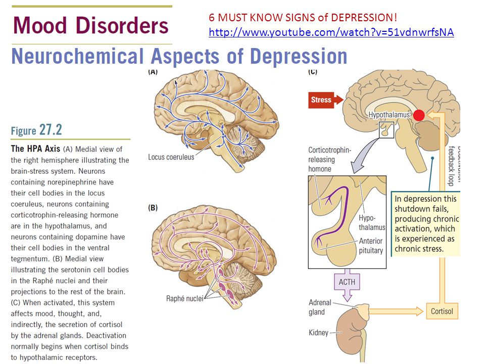 6 MUST KNOW SIGNS of DEPRESSION!