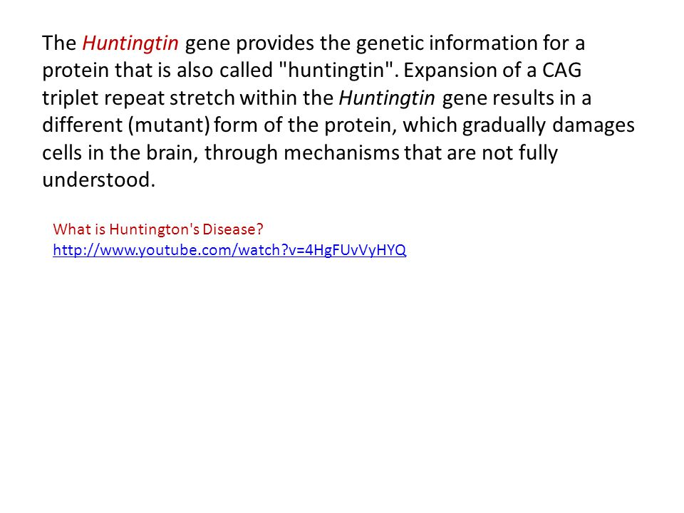 The Huntingtin gene provides the genetic information for a protein that is also called huntingtin . Expansion of a CAG triplet repeat stretch within the Huntingtin gene results in a different (mutant) form of the protein, which gradually damages cells in the brain, through mechanisms that are not fully understood.