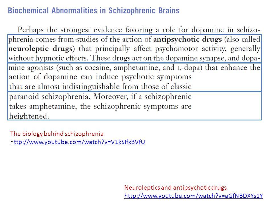 The biology behind schizophrenia