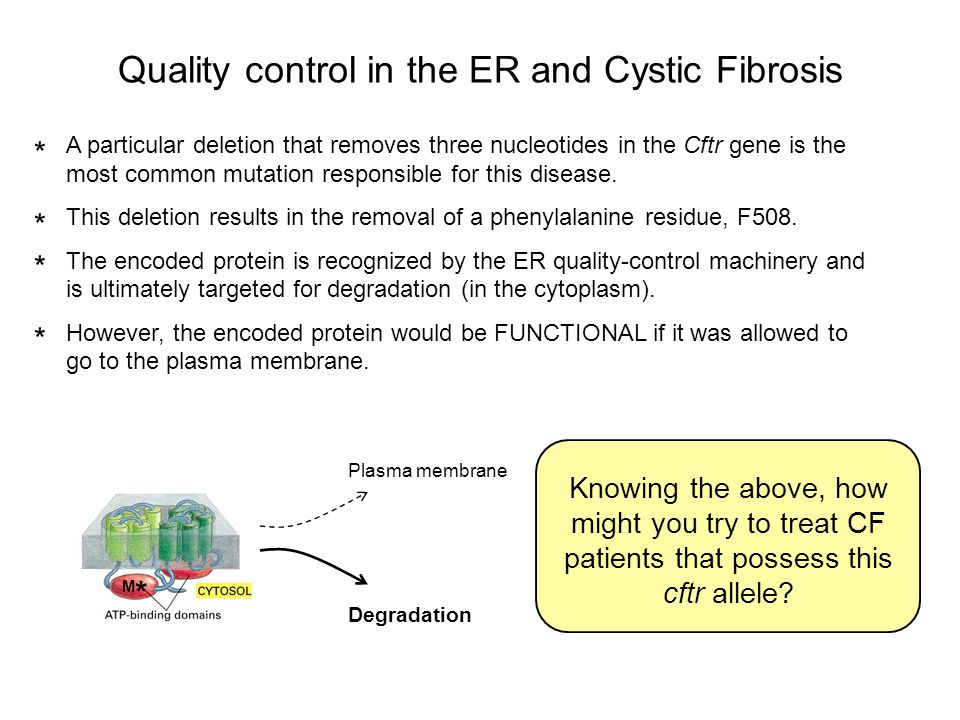 Quality control in the ER and Cystic Fibrosis