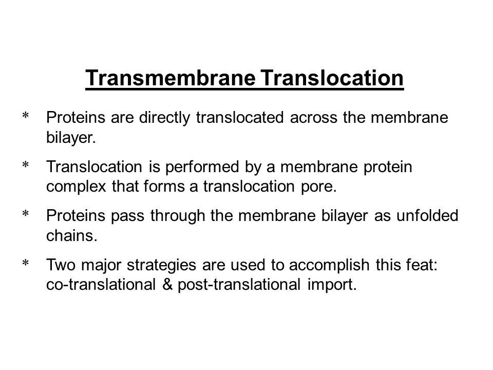 Transmembrane Translocation
