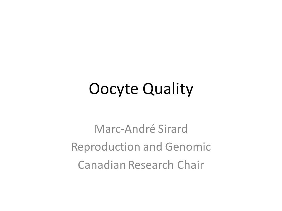 Marc-André Sirard Reproduction and Genomic Canadian Research Chair