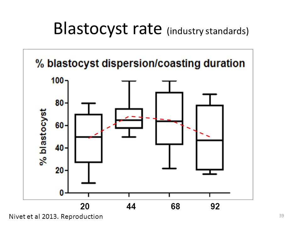 Blastocyst rate (industry standards)
