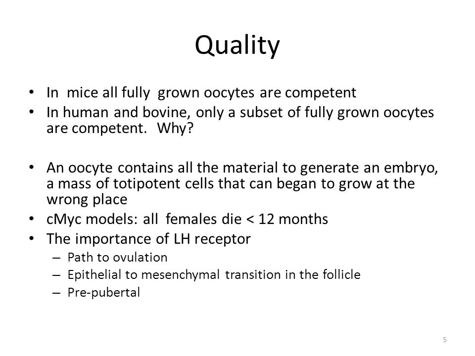 Quality In mice all fully grown oocytes are competent
