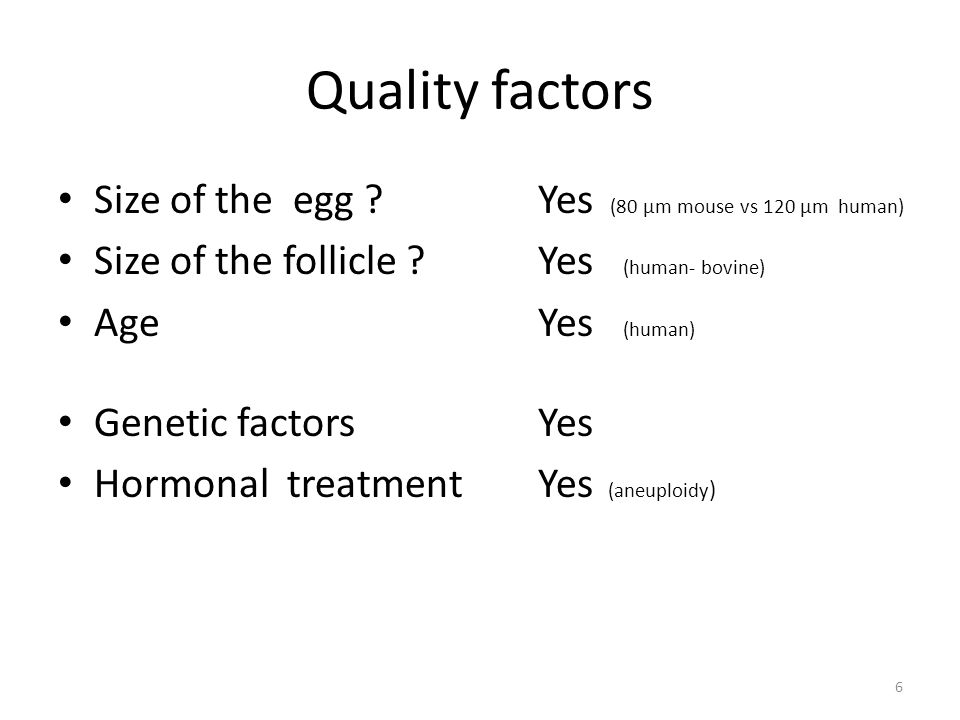 Quality factors Size of the egg Yes (80 µm mouse vs 120 µm human)
