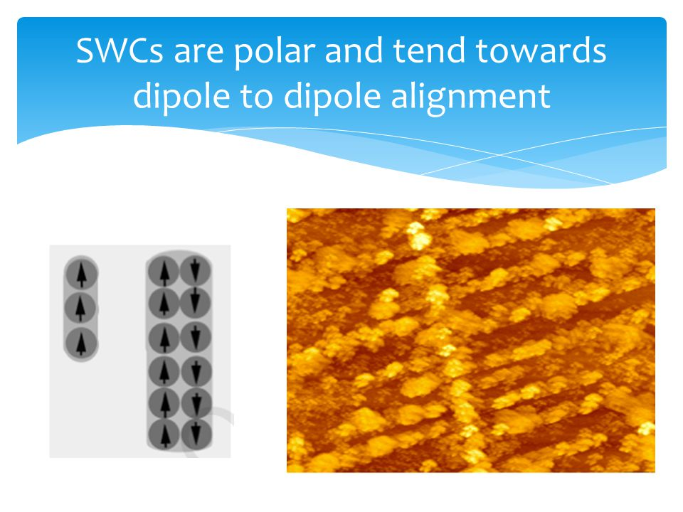 SWCs are polar and tend towards dipole to dipole alignment