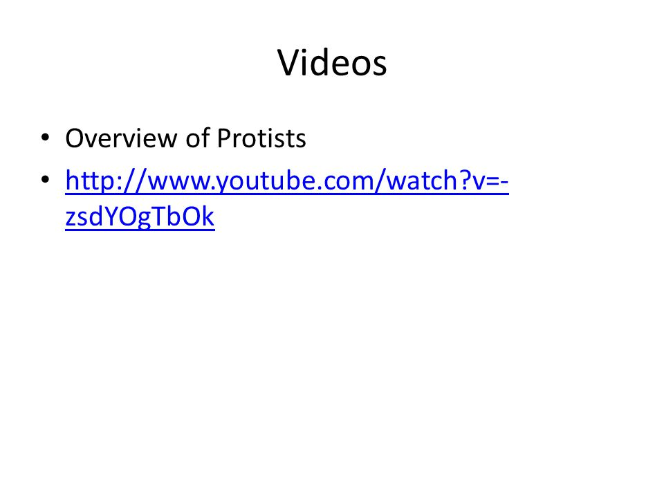 Videos Overview of Protists http://www.youtube.com/watch v=-zsdYOgTbOk