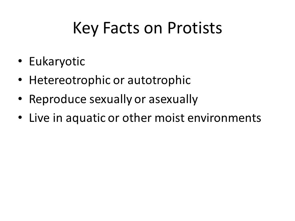 Key Facts on Protists Eukaryotic Hetereotrophic or autotrophic
