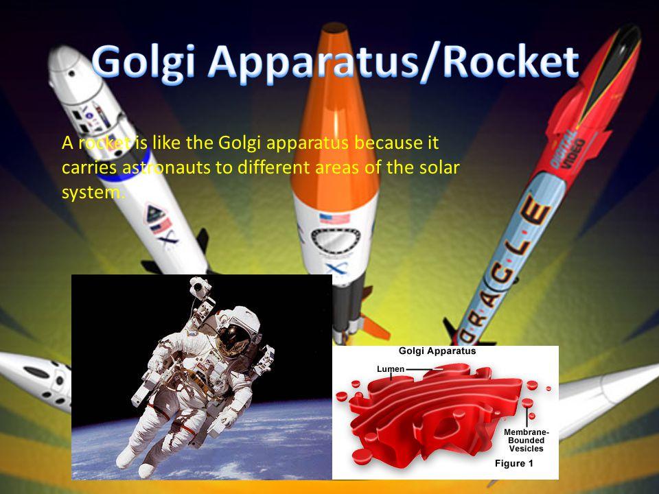 Golgi Apparatus/Rocket