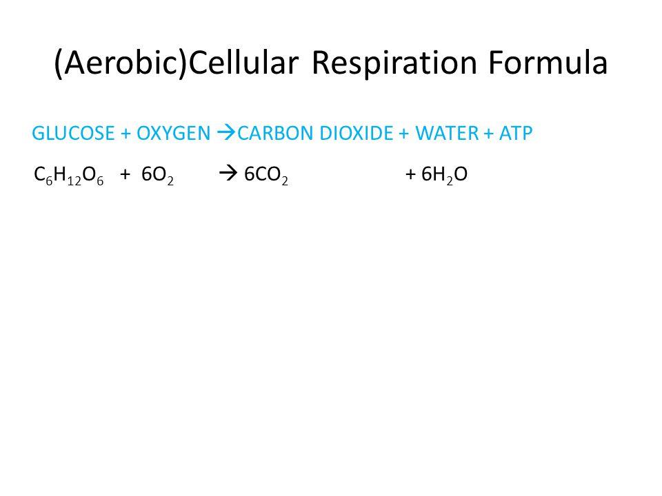 (Aerobic)Cellular Respiration Formula