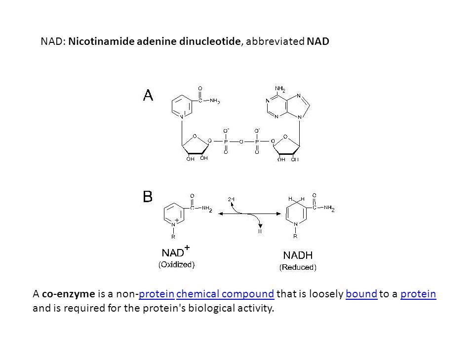 NAD: Nicotinamide adenine dinucleotide, abbreviated NAD