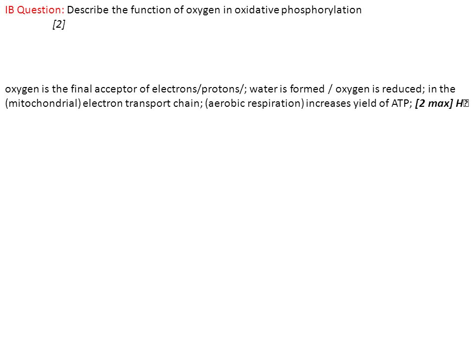 IB Question: Describe the function of oxygen in oxidative phosphorylation