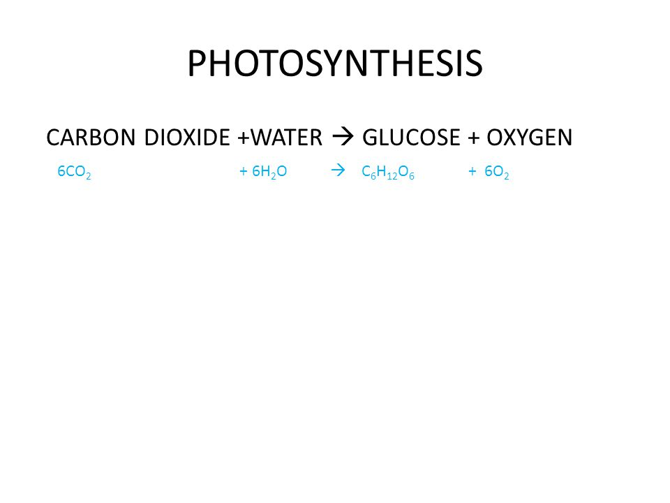 PHOTOSYNTHESIS CARBON DIOXIDE +WATER  GLUCOSE + OXYGEN