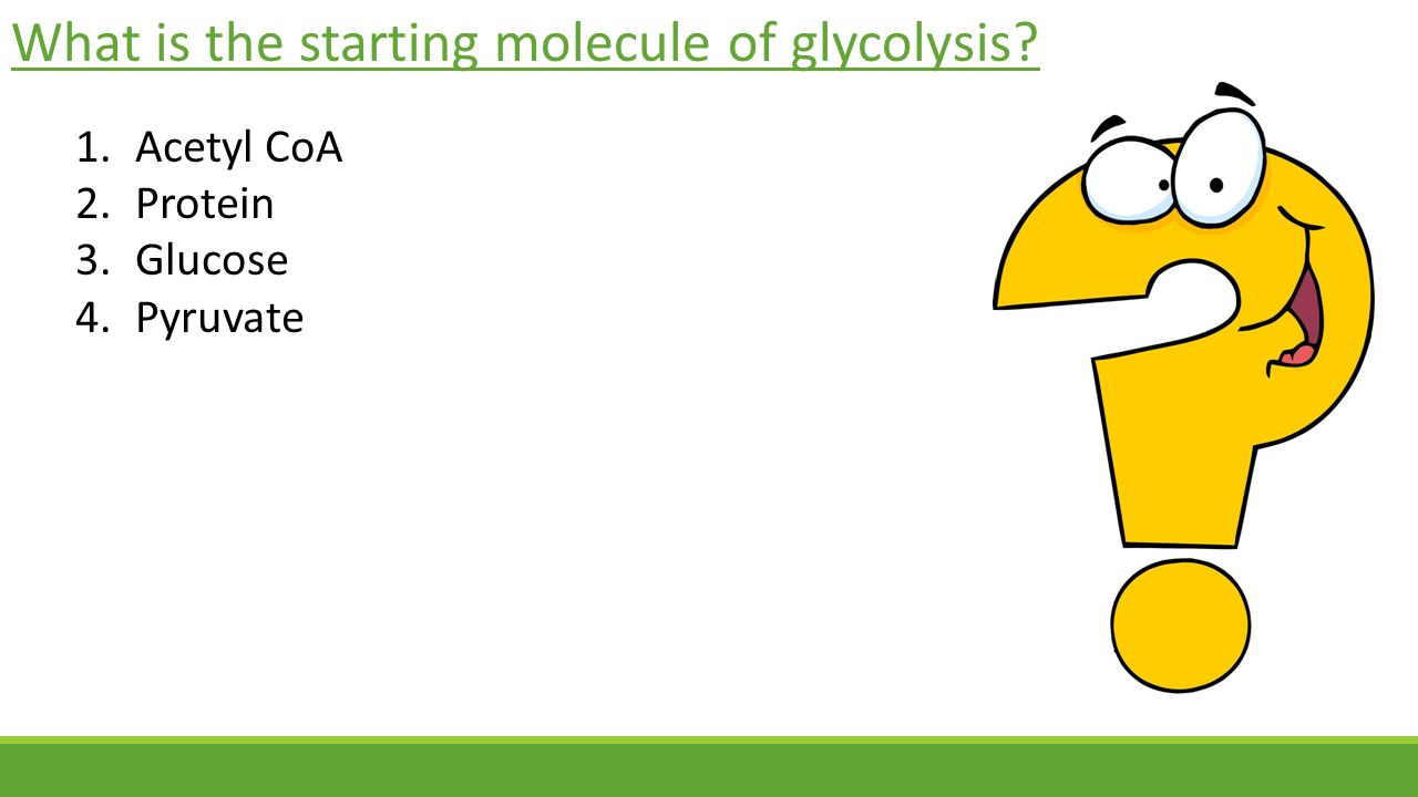 What is the starting molecule of glycolysis