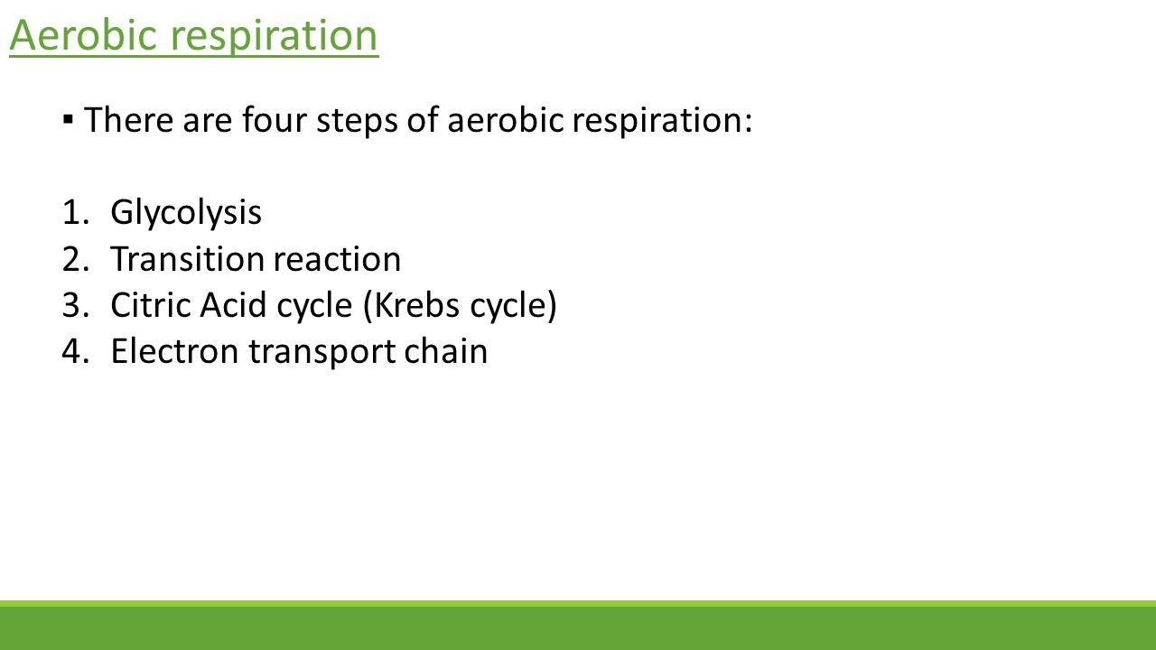 Aerobic respiration ▪ There are four steps of aerobic respiration: