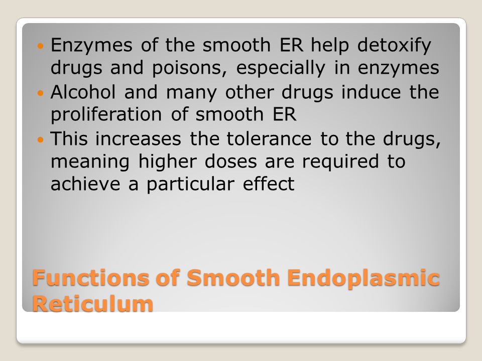Functions of Smooth Endoplasmic Reticulum