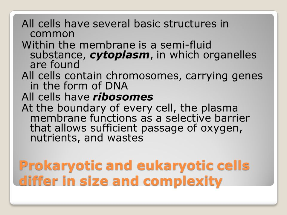 Prokaryotic and eukaryotic cells differ in size and complexity