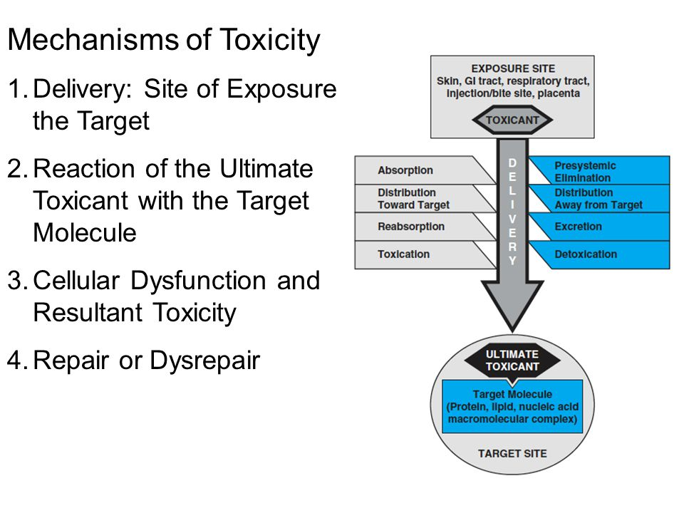 Mechanisms of Toxicity
