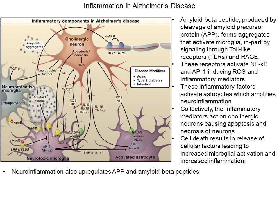 Inflammation in Alzheimer's Disease