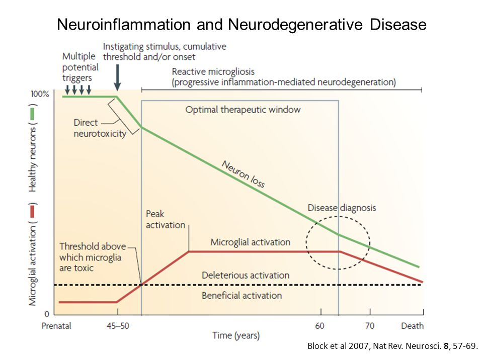 Neuroinflammation and Neurodegenerative Disease