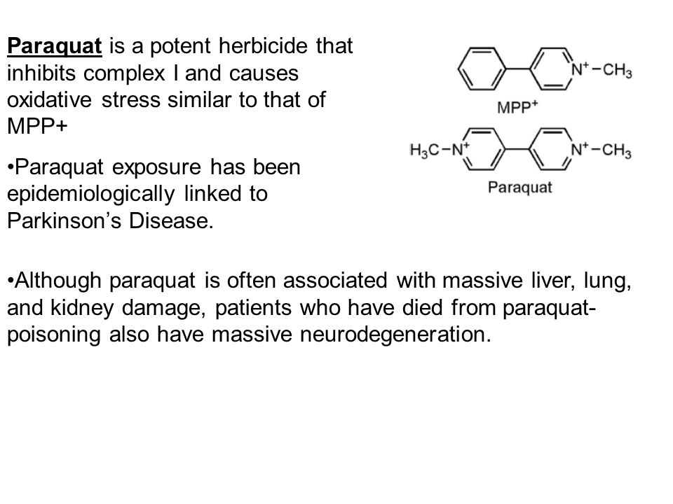 Paraquat is a potent herbicide that inhibits complex I and causes oxidative stress similar to that of MPP+