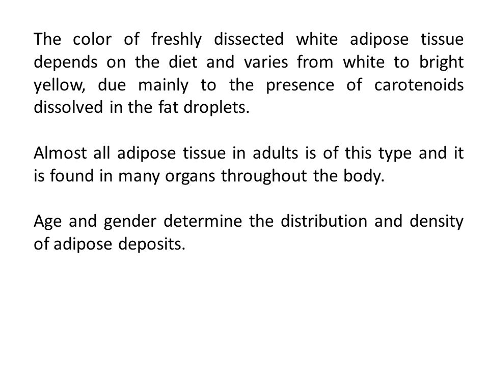 The color of freshly dissected white adipose tissue depends on the diet and varies from white to bright yellow, due mainly to the presence of carotenoids dissolved in the fat droplets.