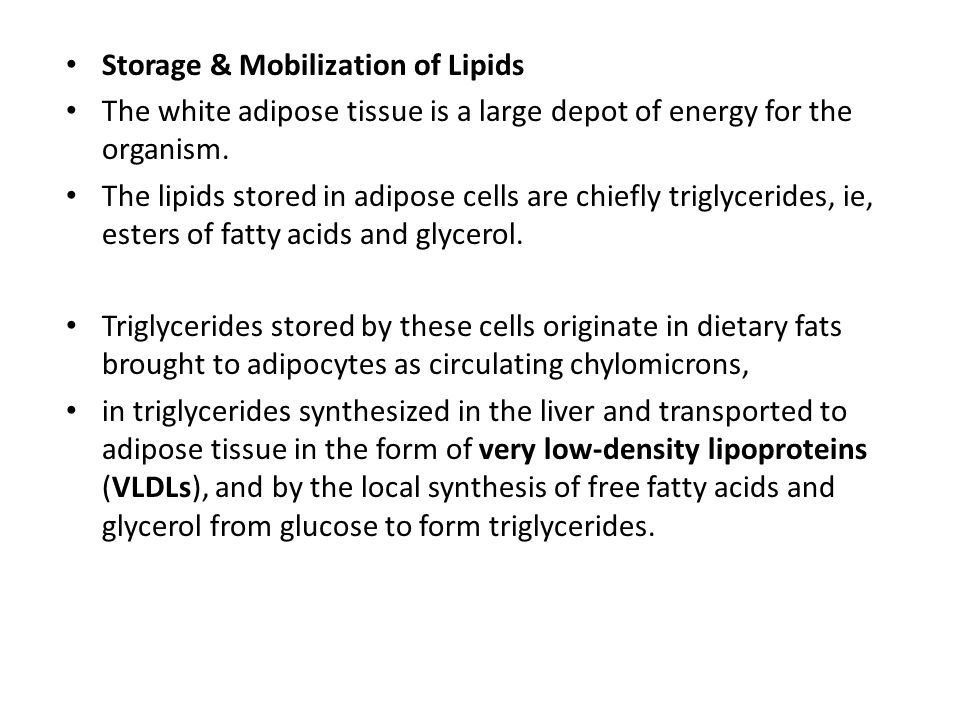 Storage & Mobilization of Lipids