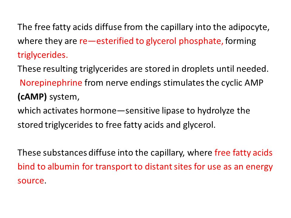 The free fatty acids diffuse from the capillary into the adipocyte,