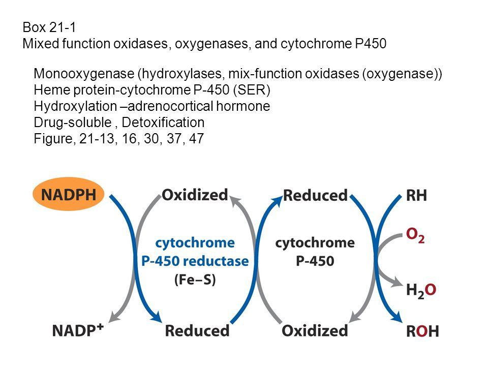Box 21-1 Mixed function oxidases, oxygenases, and cytochrome P450. Monooxygenase (hydroxylases, mix-function oxidases (oxygenase))
