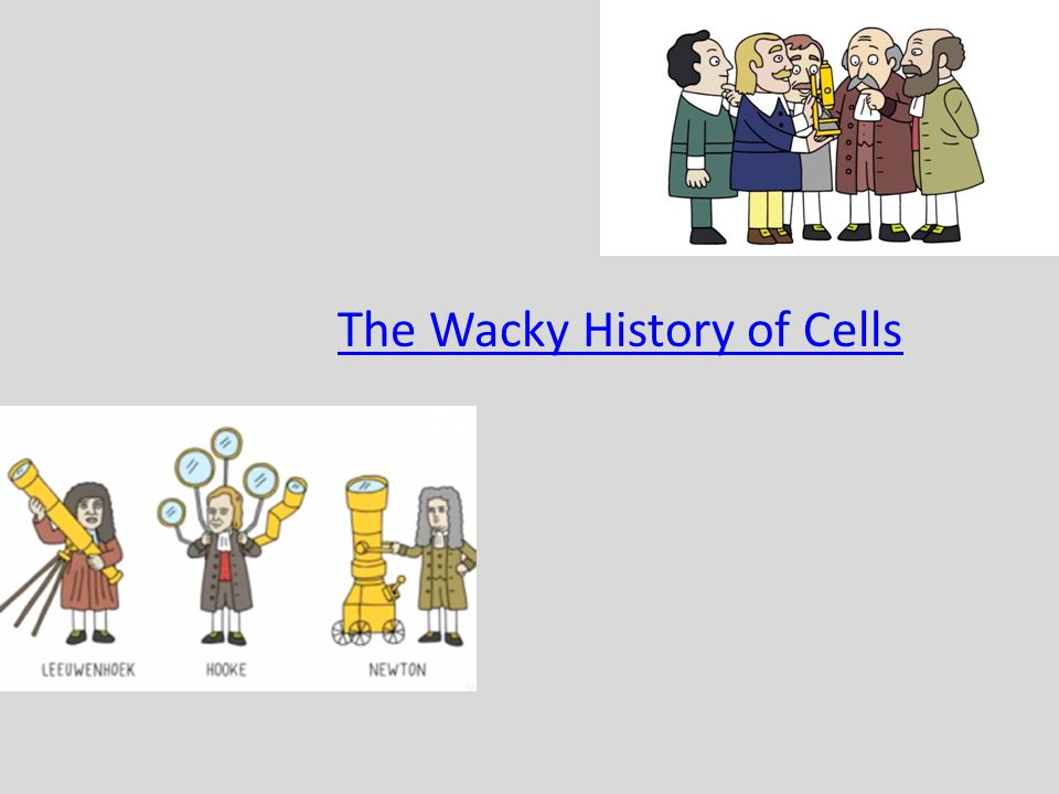 The Wacky History of Cells