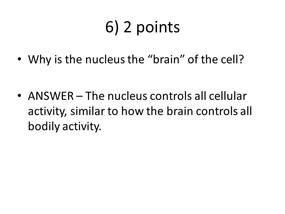 6) 2 points Why is the nucleus the brain of the cell