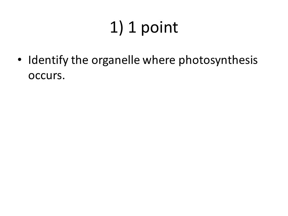 1) 1 point Identify the organelle where photosynthesis occurs.