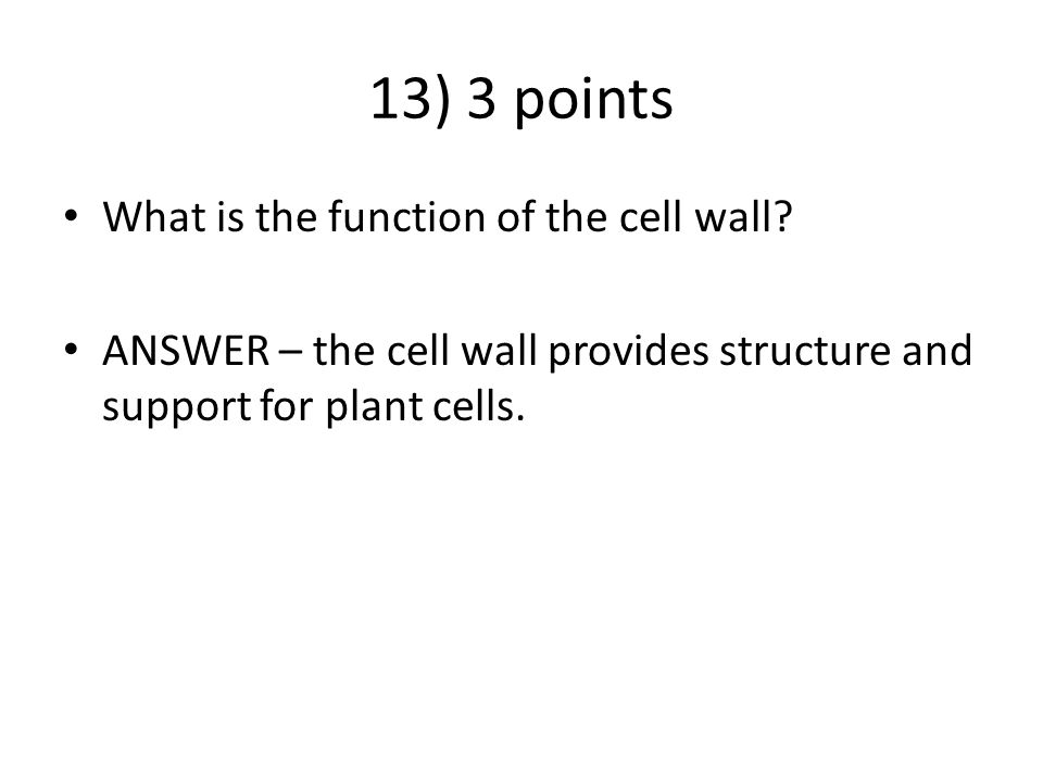 13) 3 points What is the function of the cell wall