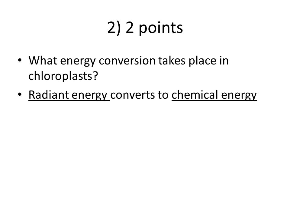 2) 2 points What energy conversion takes place in chloroplasts