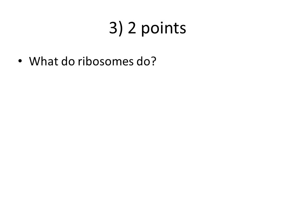 3) 2 points What do ribosomes do