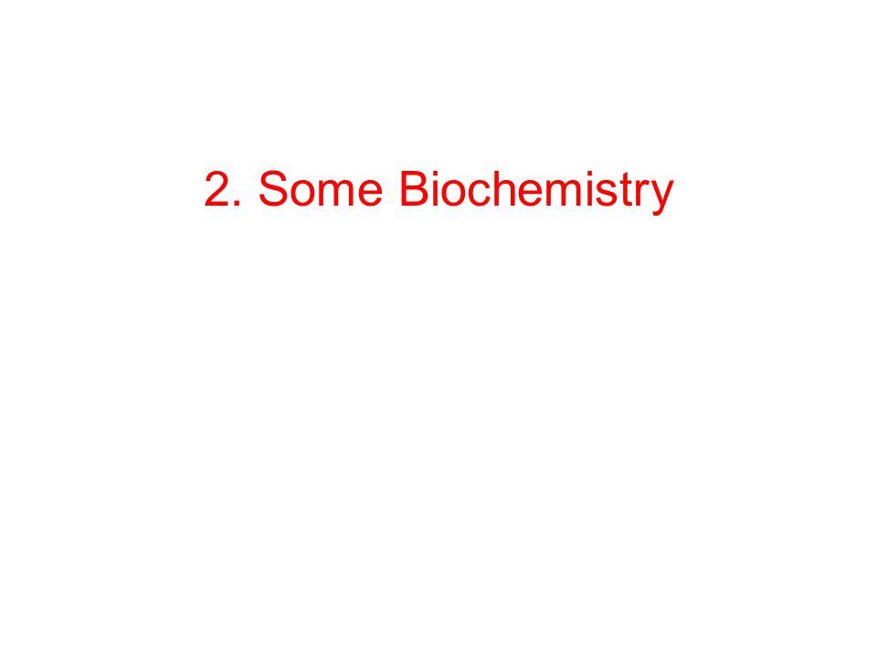 2. Some Biochemistry