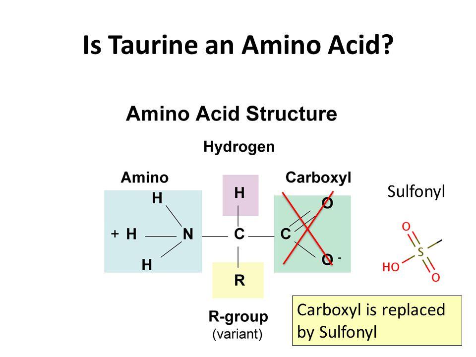 Is Taurine an Amino Acid