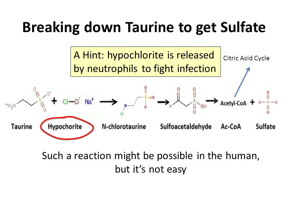 Breaking down Taurine to get Sulfate