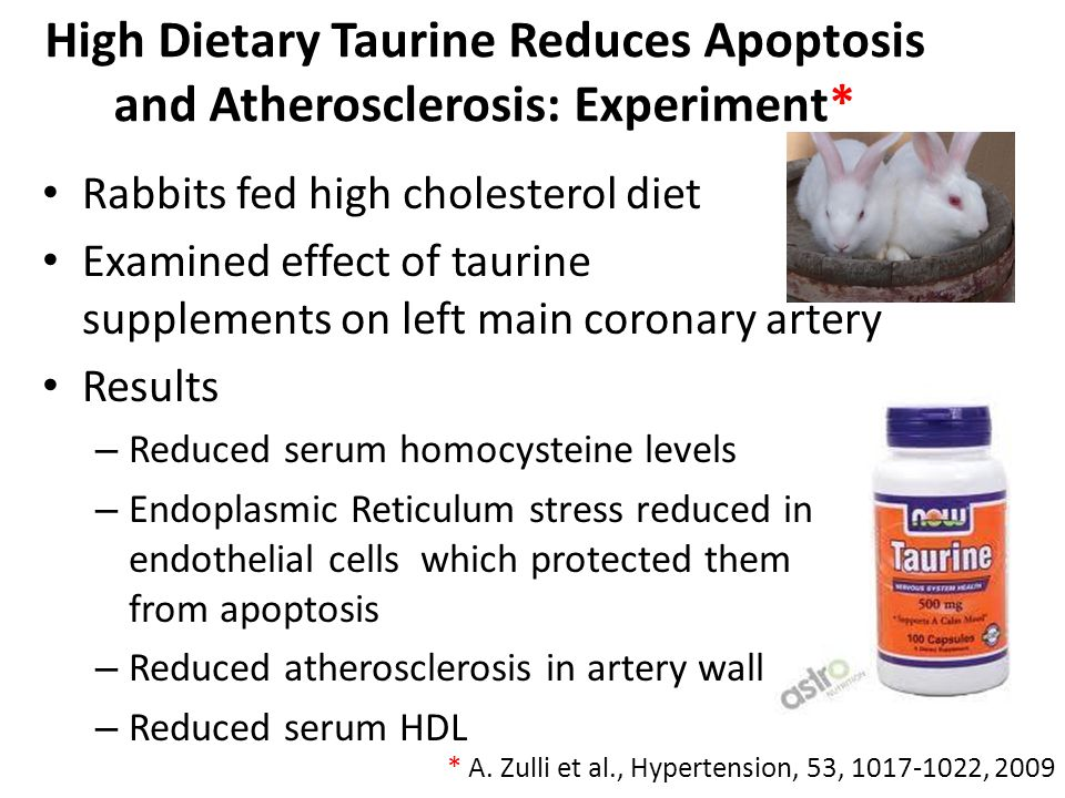 High Dietary Taurine Reduces Apoptosis and Atherosclerosis: Experiment*