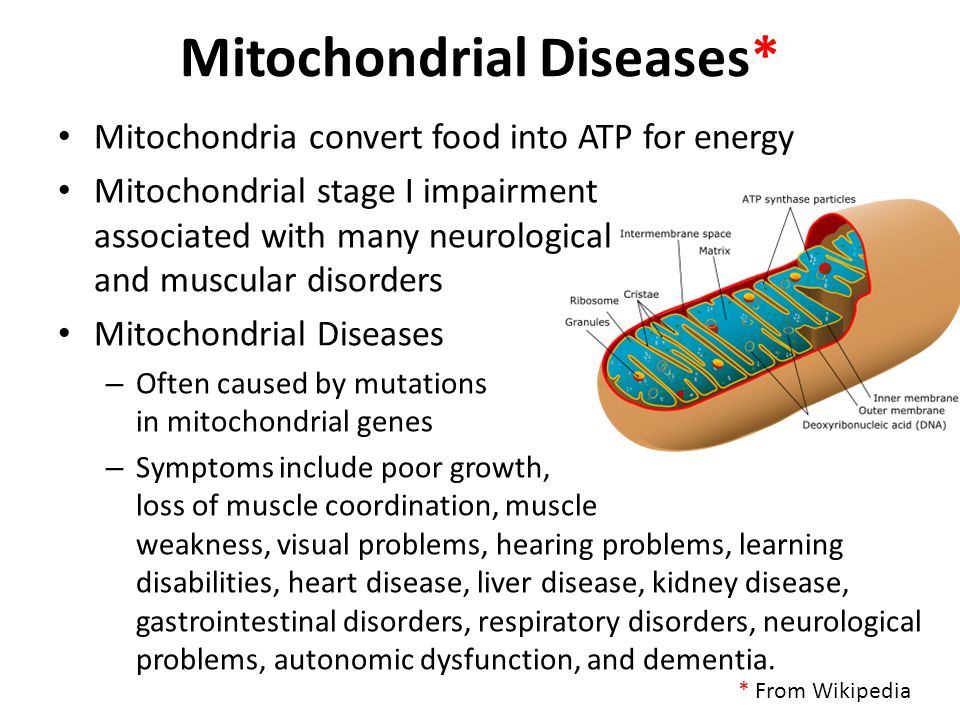 Mitochondrial Diseases*