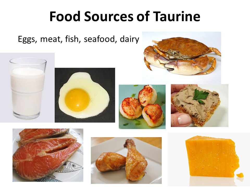 Taurine a mysterious molecule with intriguing for Fish oils are a good dietary source of