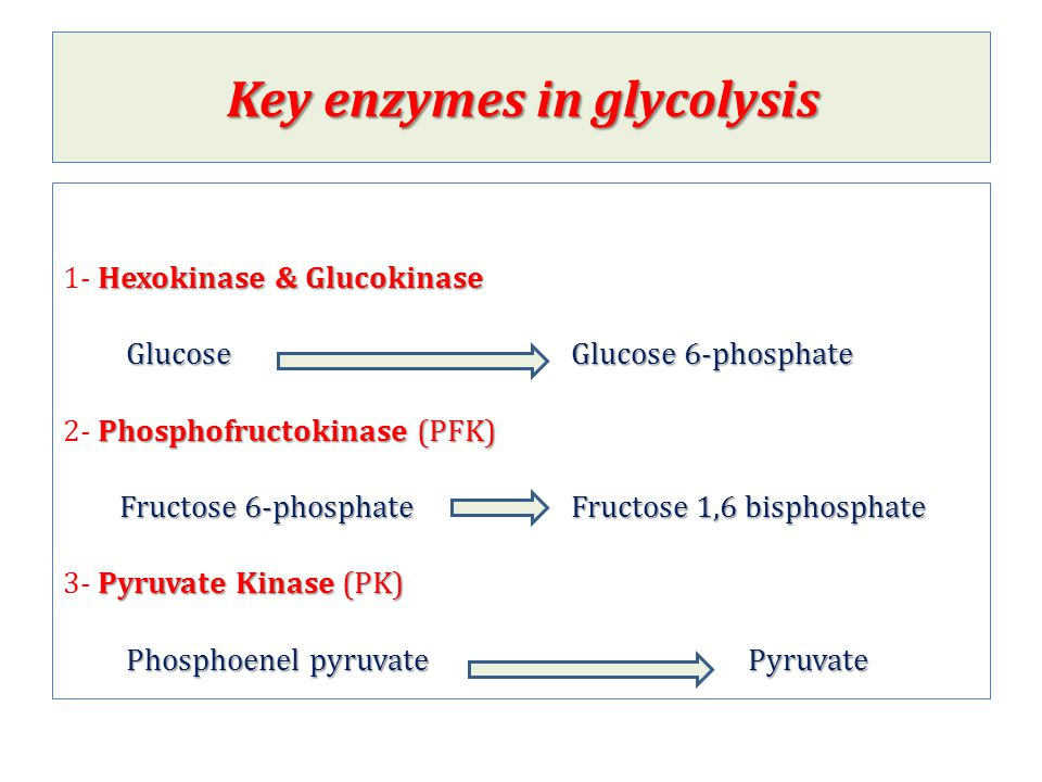 Key enzymes in glycolysis