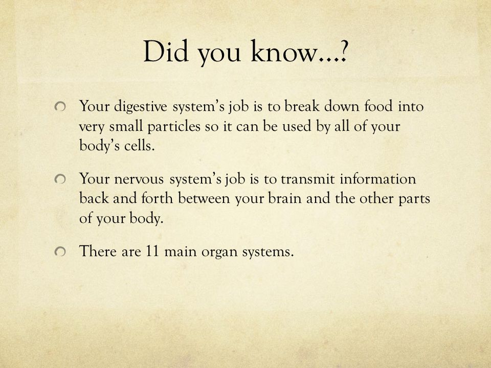 Did you know… Your digestive system's job is to break down food into very small particles so it can be used by all of your body's cells.