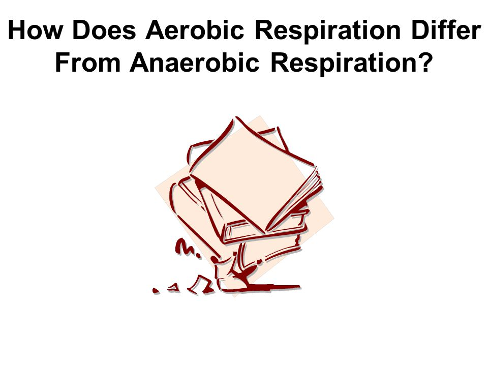 How Does Aerobic Respiration Differ From Anaerobic Respiration
