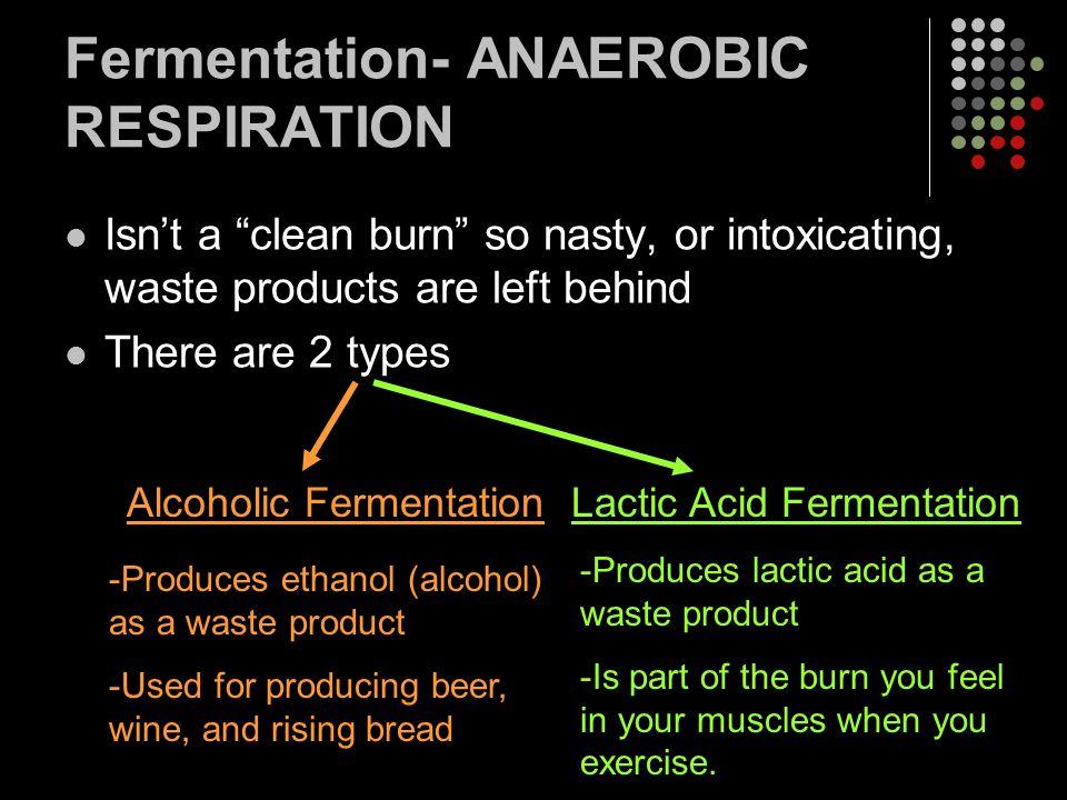 Fermentation- ANAEROBIC RESPIRATION