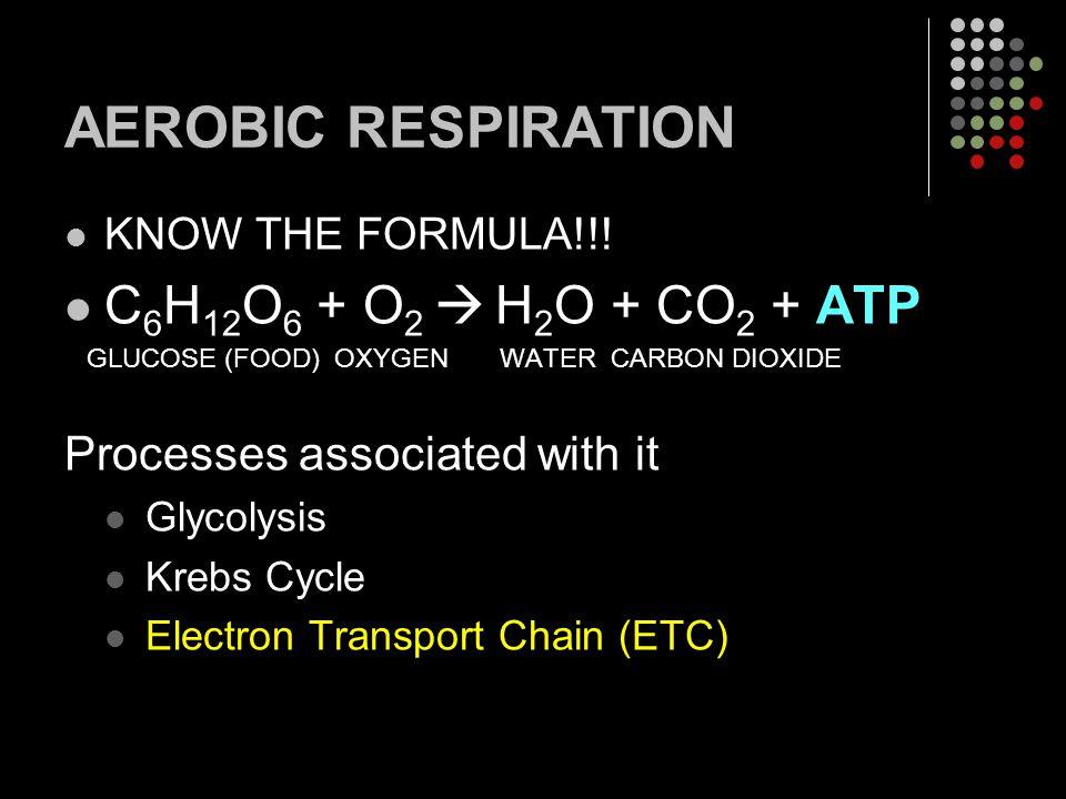 AEROBIC RESPIRATION C6H12O6 + O2  H2O + CO2 + ATP