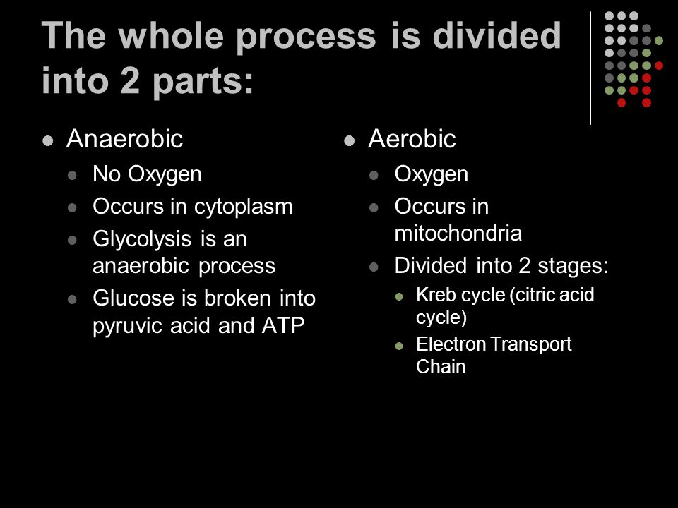 The whole process is divided into 2 parts:
