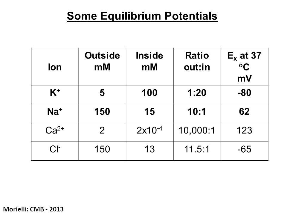 Some Equilibrium Potentials