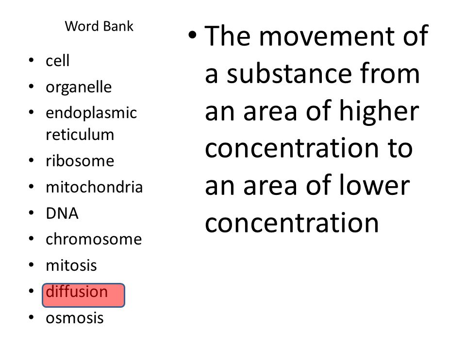 Word Bank The movement of a substance from an area of higher concentration to an area of lower concentration.
